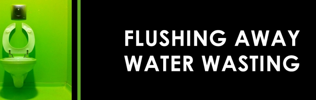 Flushing Away Water Waste