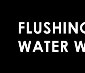 Flushing Away Water Waste
