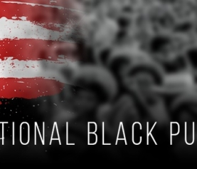 The National Black Public Consortium