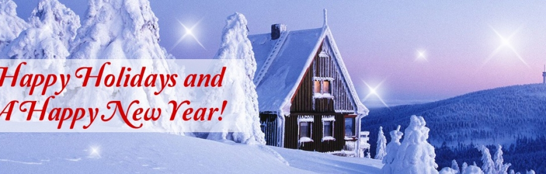 Happy Holidays and a Happy New Year