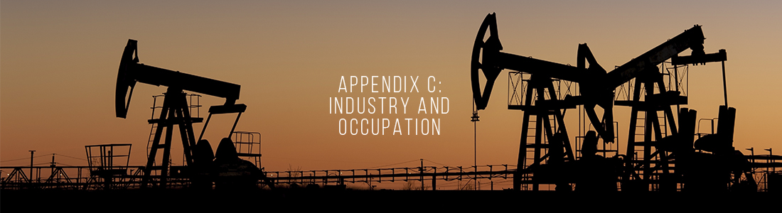 Appendix C: Industry and Occupation