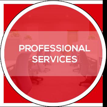PROFESSIONAL-SERVICE