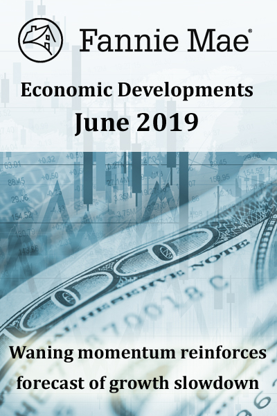 Economic Developments 2019